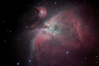 M42 der Orion Nebel